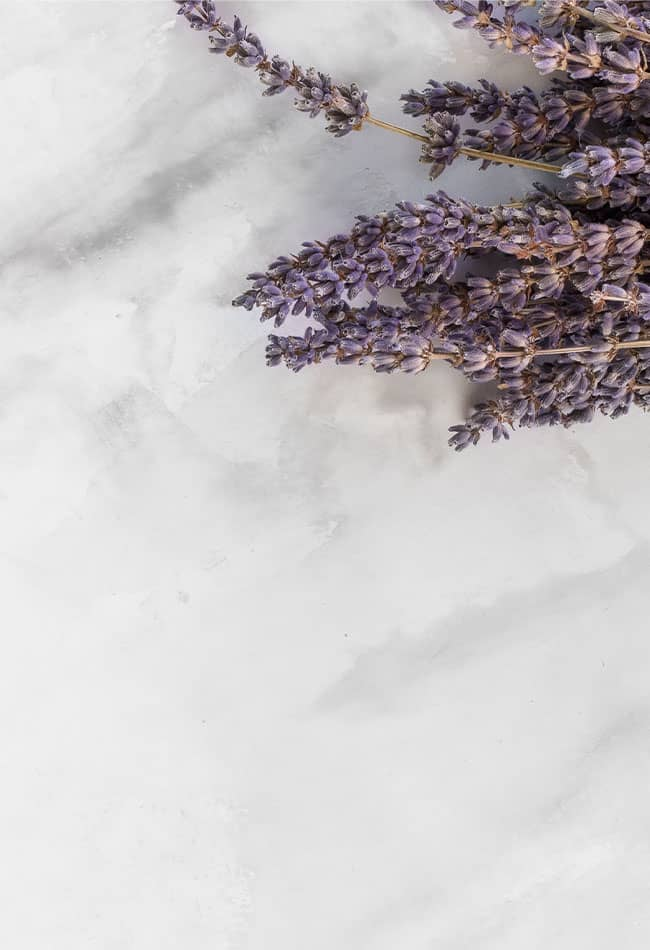 image of lavender buds on marble surface