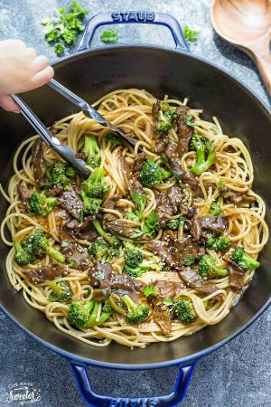 Beef Lo Mein Noodles + Recipe VIDEO