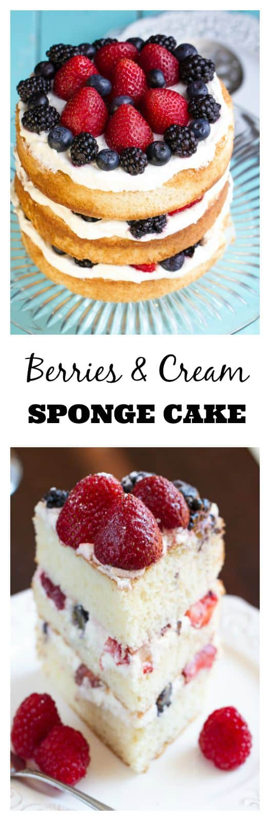 Berries and Cream Sponge Cake makes an impressive cake that's perfect for any special occasion