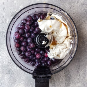 Overhead view of blueberry ice cream ingredients in a food processor