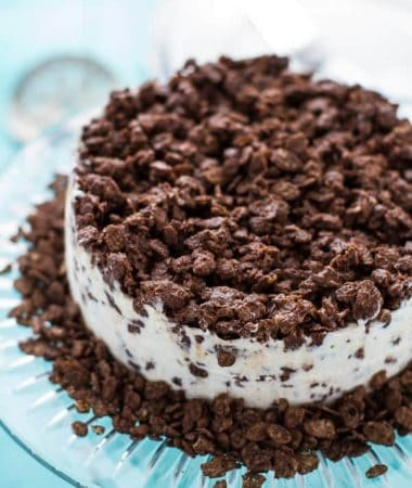 Easy Chocolate Mocha Crunch Ice Cream Cake comes together easily with only 3 ingredients