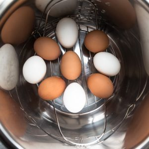Nine White and Brown Eggs on an Instant Pot Steamer Rack