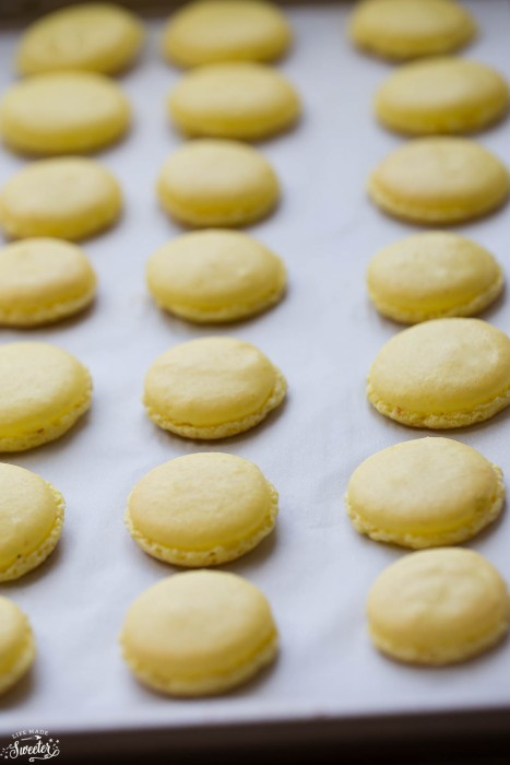 Lemon French Macarons filled with coconut buttercream make the perfect sweet treat for spring!