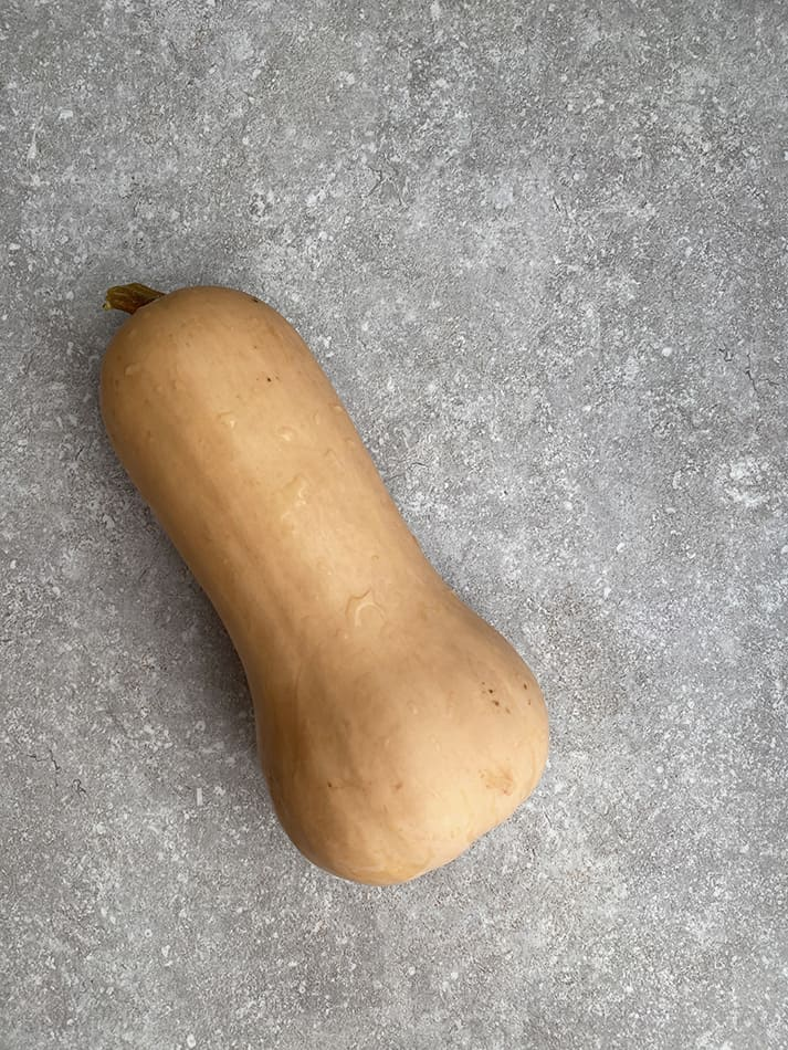 A whole butternut squash on a gray background